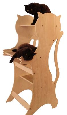 "cat tree has 3 carpeted 10 x 18""platforms and stand 48""tall with 20 x 22""footprint"