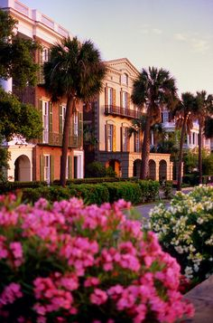 Mansions on Battery Row are lit at sunrise in Charleston, North Carolina.