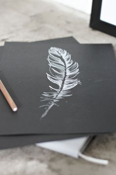 Feather drawing, DIY, white feather