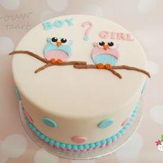 Geboorte / babyshower - Juffrouw taart Geboorte / babyshower - Juffrouw taart winsum, gender reveal taart groningen www.juffrouwtaart.nl Babyshower, Gender, Birthday Cake, Desserts, Food, Baby Shower, Birthday Cakes, Meal, Baby Sprinkle