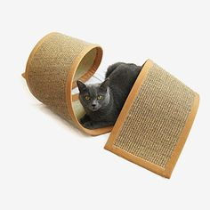 Sisal carpet #cat scratcher
