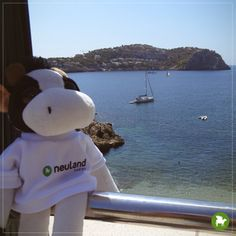 Es war sooooo schön... Der Urlaub mit meiner Kollegin Anne. Wir sind nach Mallorca geflogen. Die Landschaft, der Strand, das Essen - einfach ein Traum! Gut erholt sind wir wieder zurück und ich bin schon auf meine nächste Reise gespannt.