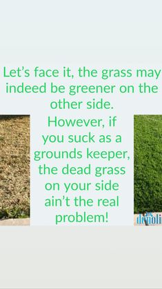 Love And Marriage, Grass, Let It Be, Face, Quotes, Qoutes, Dating, Grasses, The Face