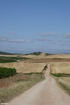 Road to Los Arcos #Camino2015 july McG