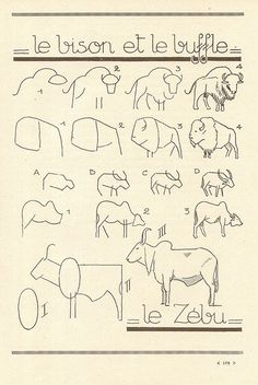 Les Animaux (how to draw) Drawing Lessons, Drawing Techniques, Drawing Tips, Art Lessons, Painting & Drawing, Doodle Drawings, Easy Drawings, Animal Drawings, Drawing Animals