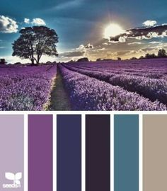 lavender setting color palette from Design Seeds Colour Pallette, Color Palate, Colour Schemes, Color Combos, Color Patterns, Purple Palette, Lavender Color Scheme, Paint Combinations, Purple Color Palettes