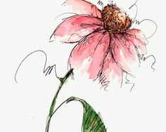 Cone Flower Original Watercolor Art Painting Red Pen and Ink Watercolor Hand Painted Flower