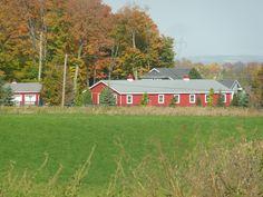 Farm country - Toronto Country Farm, Toronto, Cabin, House Styles, Photos, Home Decor, Pictures, Homemade Home Decor, Photographs