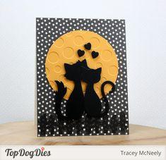 tracey_coolcats.  (Pin#1: Anniversary...  Pin+: Animals...).