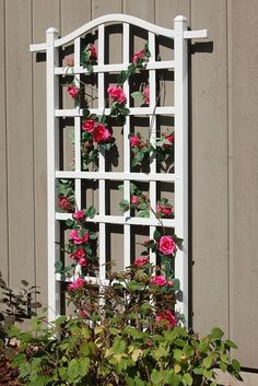 Wall Freestanding Plant Support Garden Trellis Climbing Rose Outdoor Yard Decor  #WallFreestandingPlantSupport