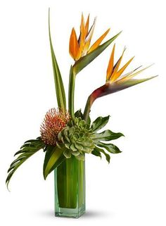 Birds of Beauty Bouquet.The exciting arrangement includes Birds of Paradise, and pin cushion protea accented with assorted tropical foliage and monstera leaves -