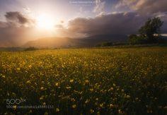 I love Valtaro by mfabius83 via http://ift.tt/23uUIQm