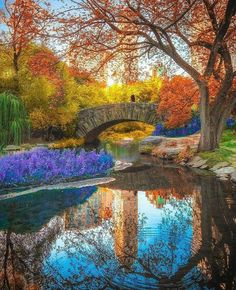 Central Park, New York, U.S.