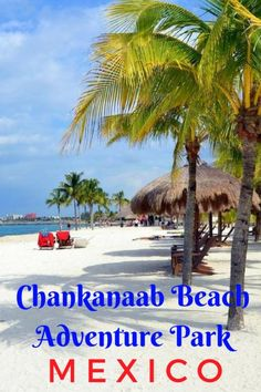Guide and tips for visiting Chankanaab Beach Adventure Park during a cruise stop in Cozumel, Mexico | What to do in Cozumel for a day