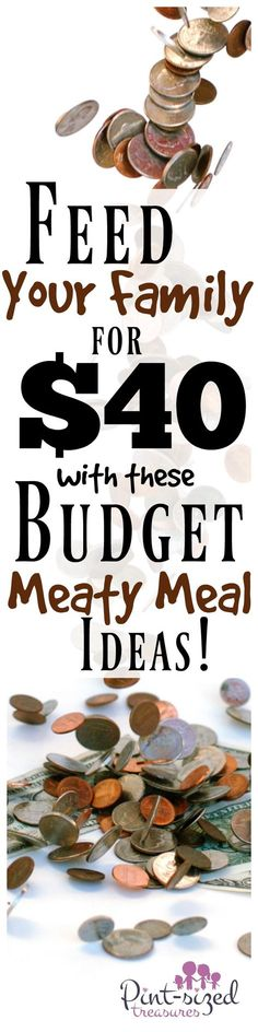 Feed your family for $40 with meaty meals? Yes you can! Don't let tight budgets get you stressed in your meal planning! Check out these amazing budget meaty meal ideas that will make your family's taste buds tingle --- on the cheap! Learn how to prepare a meaty meal for cheap!