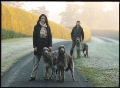 Barbour and dogs Town And Country, Country Life, Country Style, Scottish Deerhound, Irish Wolfhounds, Gentleman, Barbour Jacket, Lurcher