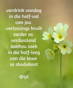 Afrikaanse Quotes, Goeie More, Hart, Prayer Quotes, Life Lessons, Qoutes, Prayers, Bling, Quotations