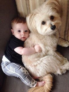#cuteever #baby #puppy
