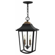 Found it at Wayfair - Burton 2 Light Outdoor Hanging Lantern