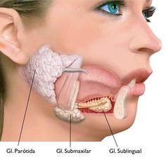 Por qué tengo la boca seca - 7 pasos (con imágenes)