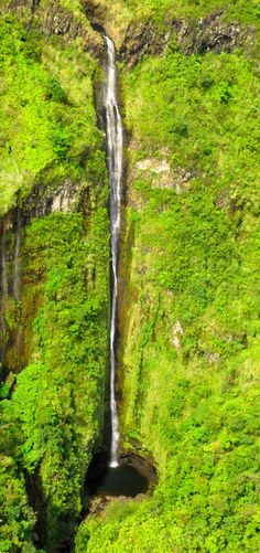 Waimoku waterfall, Maui, Hawaii! Click through to see 27 of the best things to do in Hawaii!