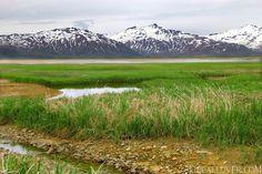 #Alaska Katmai National Park