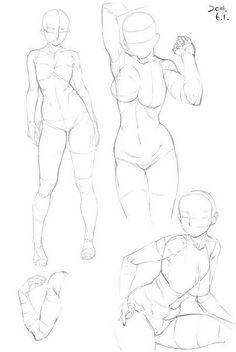 Pin by Richard Clark on Anatomy Reference | Art reference