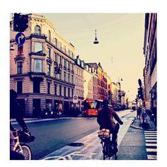 #denmark Instagram photos | Websta