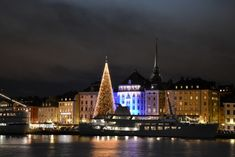 From traditional Christmas markets to living advent calendars to the world's tallest Christmas tree Stockholm's Christmas season is packed with fun.