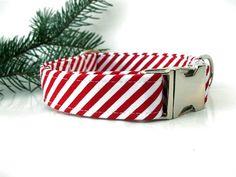 Christmas Dog Collar - Peppermint Stick - Nickel Hardware.(via Etsy)
