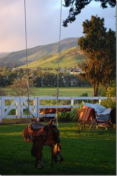 Love the view, the lush green grass, & the adorable saddle swing!!