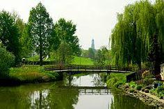 Afbeeldingsresultaat voor groen in stad