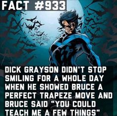 Dick Grayson - complement from Batman - Visit to grab an amazing super hero shirt now on sale! Batman Facts, Superhero Facts, Marvel Facts, Marvel Vs, Marvel Dc Comics, Young Justice, Nightwing, Batgirl, Robins