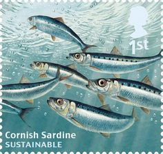 CORNISH SARDINES | Royal Mail 2014 Sustainable Fish: Special stamps' issue showing the Cornish Sardine     ✫ღ⊰n