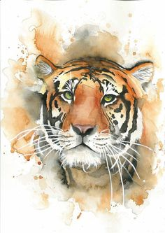 watercolour tiger by MadameKunterbunt #watercolorarts