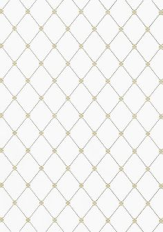 WILTON TRELLIS, Metallic Gold and Grey, T1845, Collection Geometric Resource from Thibaut