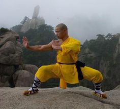 A few months ago, when I was in China, a friend of mine called to say he was unwell. I asked him to come and visit me so I could teach him Qigong, he told me he Shaolin Kung Fu, Karate, Fighter Workout, Human Poses Reference, Art Reference, Kung Fu Martial Arts, Art Of Fighting, Films Cinema, Massage Tips