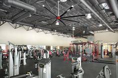 Fitness Centre Fans | Big Ass Fans
