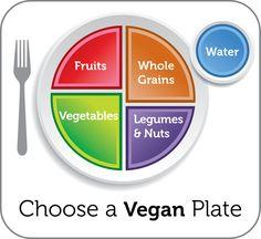 Volwaardig veganistisch dagmenu. Het is niet zo moeilijk om vlees, vis, kaas en al die andere zuivelproducten de deur uit te doen. Maar ja, wat dan?