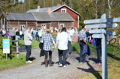 Turkansaaren ulkomuseon  miljöö luo markkinoille kauniin ympäristön. Luuppi, Oulu (Finland)