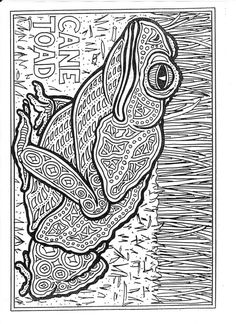 free animal coloring pages for adults | whatwasthatone: Colouring books