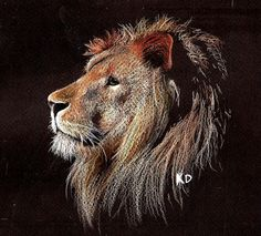 Lion Prismacolor prencil drawing    http://kathleen631.deviantart.com/art/Lion-298080335
