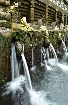 "Pura Tirta Empul is a water temple located in the village of Manukayu. The name of the temple means ""holy water spring"" in Balinese. Stuff To Do, Things To Do, Water Temple, Rice Terraces, Spring Water, Balinese, Ubud, Southeast Asia, Holi"