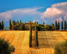 фото Тосканы – 06
