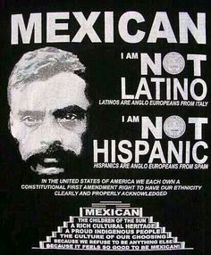 Mexican, not Latino, not Hispanic