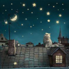 Goodnight, Moon.