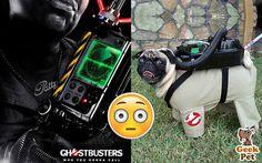 Hoy vamos al cine a ver #Cazafantasmas3 #Ghostbusters3 #Ghostbusters #Ghostbuster2016 :)