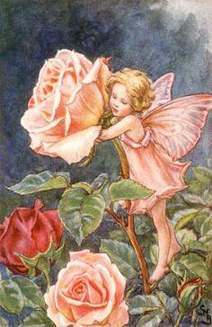 Rose Fairy Vintage Wall Art