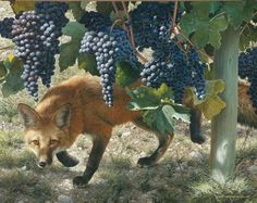 Between the Vines by Carl Brenders | Giclee Canvas