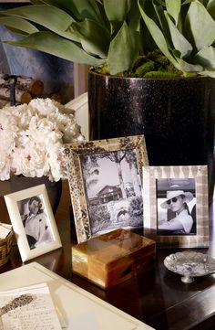 Pictures of exciting travel and adventure best displayed in exotic snakeskin picture frames